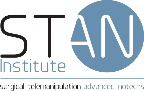 logo Stan Institute